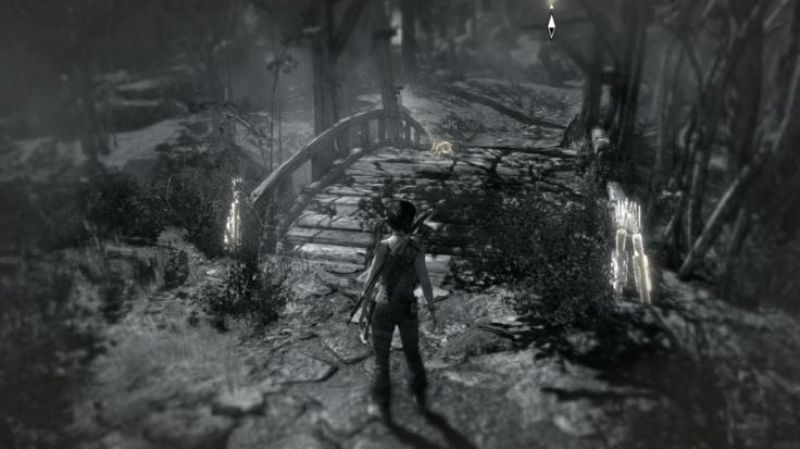 Tomb Raider 2013 (2)